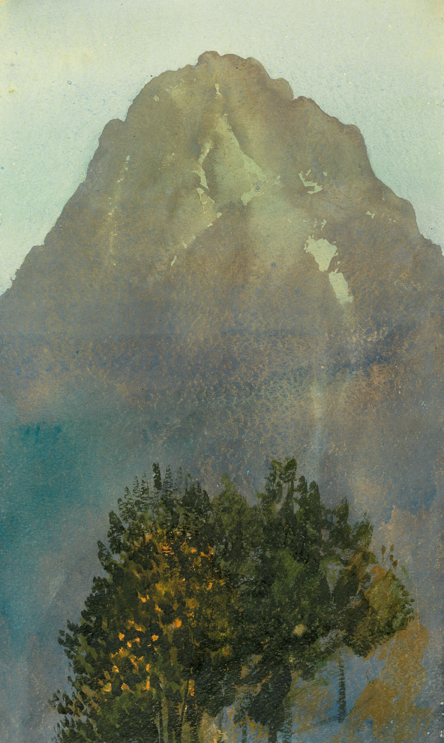 C Brosch Waldkulisse vor Traunsten